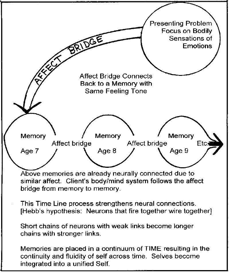 The Neuroscience of Lifespan Integration Therapy - Lifespan